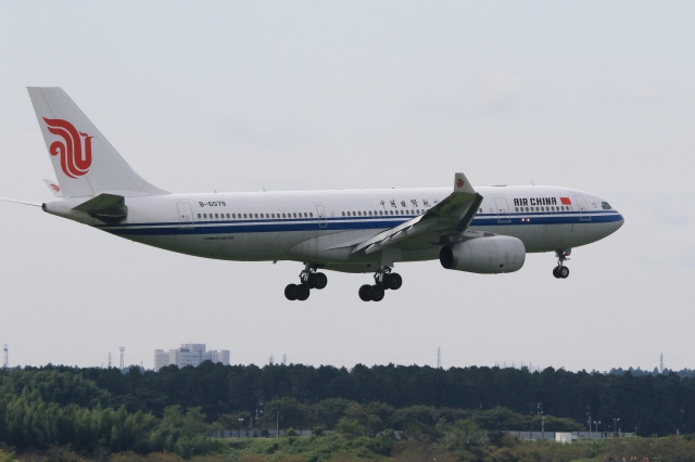Hiro-hiroさんが、成田国際空港で撮影した中国国際航空 A330-243の航空フォト(飛行機 写真・画像)