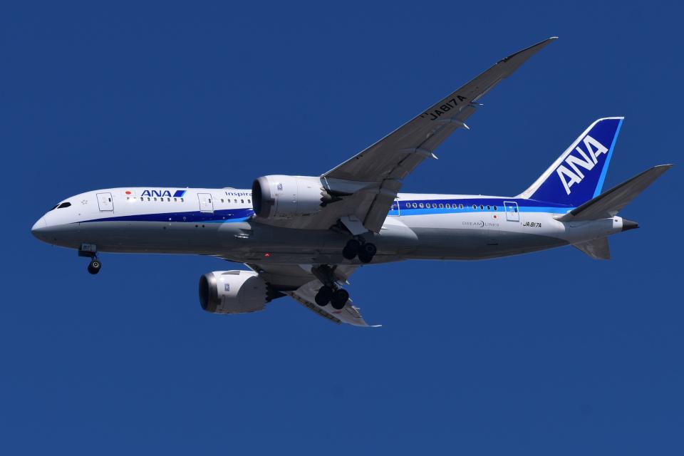 TOPAZ102さんの全日空 Boeing 787-8 Dreamliner (JA817A) 航空フォト