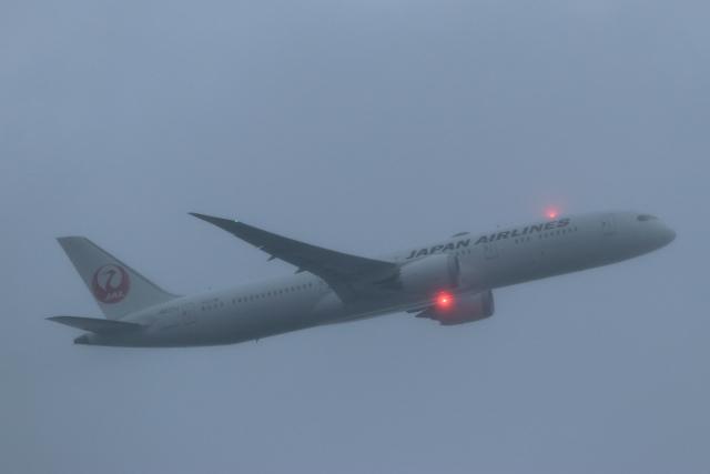 imosaさんが、羽田空港で撮影した日本航空 787-9の航空フォト(飛行機 写真・画像)