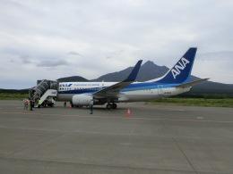 ヒロリンさんが、利尻空港で撮影した全日空 737-781の航空フォト(飛行機 写真・画像)