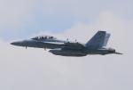 キイロイトリさんが、嘉手納飛行場で撮影したアメリカ海軍 EA-18G Growlerの航空フォト(飛行機 写真・画像)