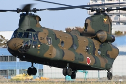 ほてるやんきーさんが、立川飛行場で撮影した陸上自衛隊 CH-47Jの航空フォト(飛行機 写真・画像)