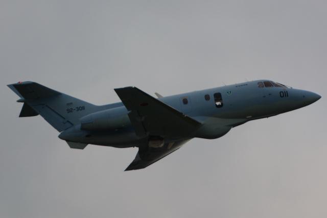 banshee02さんが、入間飛行場で撮影した航空自衛隊 U-125A(Hawker 800)の航空フォト(飛行機 写真・画像)