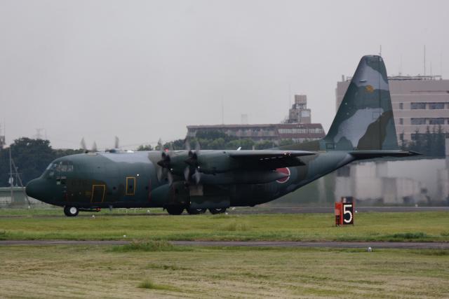 banshee02さんが、入間飛行場で撮影した航空自衛隊 C-130H Herculesの航空フォト(飛行機 写真・画像)