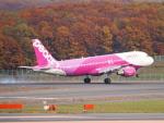 むらさめさんが、新千歳空港で撮影したピーチ A320-214の航空フォト(飛行機 写真・画像)