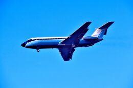 パール大山さんが、ロサンゼルス国際空港で撮影したDresser Ind., Inc. 111-401AK One-Elevenの航空フォト(飛行機 写真・画像)
