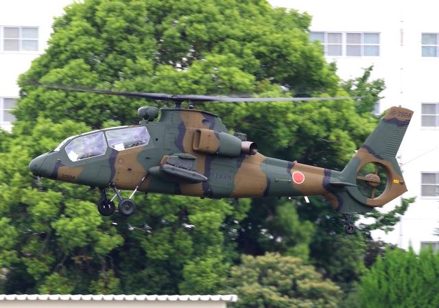 LOTUSさんが、八尾空港で撮影した陸上自衛隊 OH-1の航空フォト(飛行機 写真・画像)