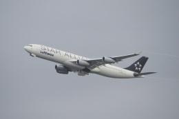 飛行機ゆうちゃんさんが、羽田空港で撮影したルフトハンザドイツ航空 A340-313Xの航空フォト(飛行機 写真・画像)