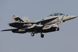 Talon.Kさんが、厚木飛行場で撮影したアメリカ海軍 EA-18G Growlerの航空フォト(飛行機 写真・画像)