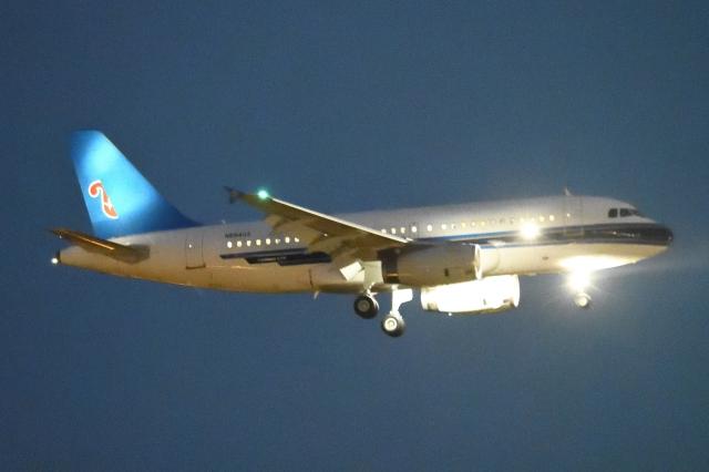 木人さんが、成田国際空港で撮影したユナイテッド航空 A319-132の航空フォト(飛行機 写真・画像)