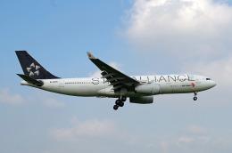 szkkjさんが、成田国際空港で撮影した中国国際航空 A330-243の航空フォト(飛行機 写真・画像)