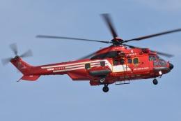 ブルーさんさんが、東京ヘリポートで撮影した東京消防庁航空隊 EC225LP Super Puma Mk2+の航空フォト(飛行機 写真・画像)