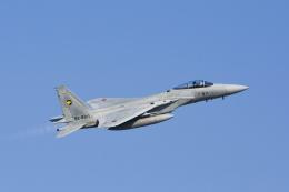 ワイワイさんが、小松空港 - Komatsu Airport [KMQ/RJNK]で撮影した航空自衛隊 F-15J Eagleの航空フォト(飛行機 写真・画像)