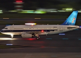 SFJ_capさんが、成田国際空港で撮影したユナイテッド航空 A319-132の航空フォト(飛行機 写真・画像)