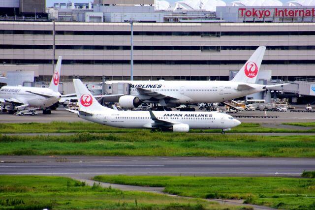 まいけるさんが、羽田空港で撮影した日本航空 737-846の航空フォト(飛行機 写真・画像)