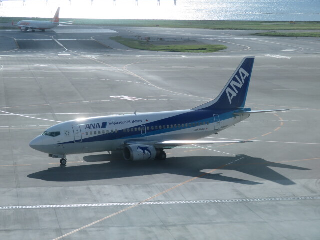 Tradel View FUKUROさんが、那覇空港で撮影したANAウイングス 737-54Kの航空フォト(飛行機 写真・画像)