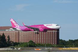 神宮寺ももさんが、成田国際空港で撮影したピーチ A320-214の航空フォト(飛行機 写真・画像)