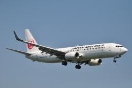 M.Ochiaiさんが、宮崎空港で撮影した日本航空 737-846の航空フォト(飛行機 写真・画像)