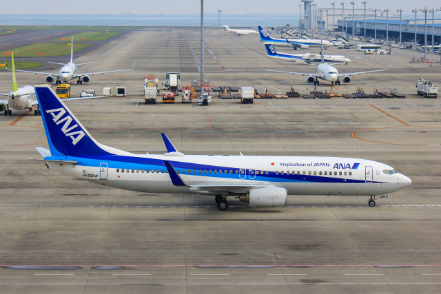 かっちゃん✈︎さんが、中部国際空港で撮影した全日空 737-881の航空フォト(飛行機 写真・画像)