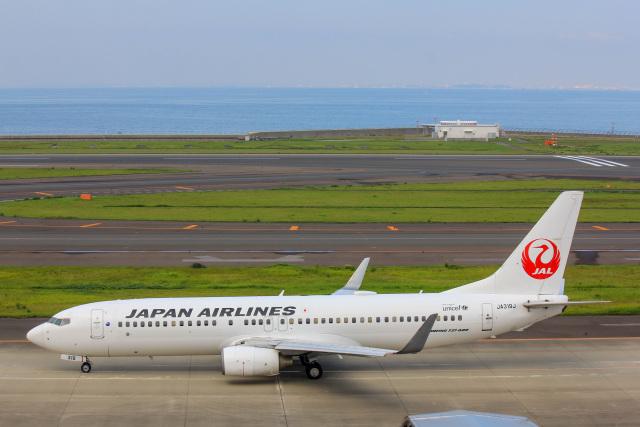 かっちゃん✈︎さんが、中部国際空港で撮影した日本航空 737-846の航空フォト(飛行機 写真・画像)