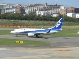 commet7575さんが、福岡空港で撮影した全日空 737-781の航空フォト(飛行機 写真・画像)