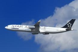 nh747dさんが、羽田空港で撮影したルフトハンザドイツ航空 A340-313Xの航空フォト(飛行機 写真・画像)