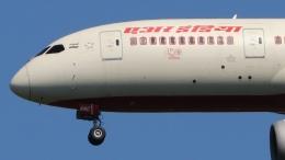 raichanさんが、成田国際空港で撮影したエア・インディア 787-8 Dreamlinerの航空フォト(飛行機 写真・画像)