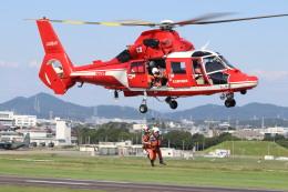 flyflygoさんが、名古屋飛行場で撮影した名古屋市消防航空隊 AS365N3 Dauphin 2の航空フォト(飛行機 写真・画像)