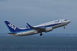 PIRORINGさんが、中部国際空港で撮影した全日空 737-781の航空フォト(飛行機 写真・画像)