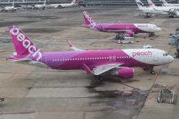 じゃがさんが、成田国際空港で撮影したピーチ A320-214の航空フォト(飛行機 写真・画像)