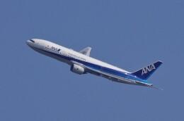mild lifeさんが、伊丹空港で撮影した全日空 777-281/ERの航空フォト(飛行機 写真・画像)