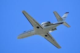 飛行機ゆうちゃんさんが、厚木飛行場で撮影したアメリカ陸軍 560 Citation V/Ultra/Encoreの航空フォト(飛行機 写真・画像)