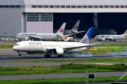 まいけるさんが、羽田空港で撮影したユナイテッド航空 787-9の航空フォト(飛行機 写真・画像)