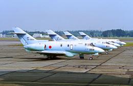 A-330さんが、入間飛行場で撮影した航空自衛隊 U-125A(Hawker 800)の航空フォト(飛行機 写真・画像)