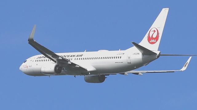 撮り撮り人さんが、岡山空港で撮影した日本トランスオーシャン航空 737-8Q3の航空フォト(飛行機 写真・画像)
