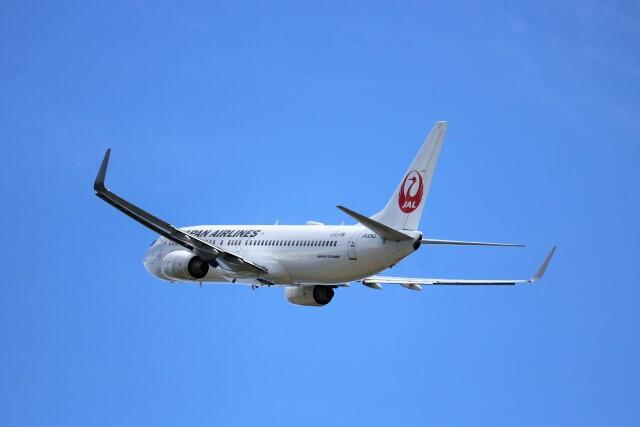 ヒロジーさんが、広島空港で撮影した日本航空 737-846の航空フォト(飛行機 写真・画像)