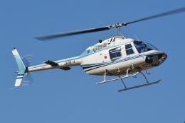 ブルーさんさんが、東京ヘリポートで撮影したエビエーションサービス 206B-3 JetRanger IIIの航空フォト(飛行機 写真・画像)