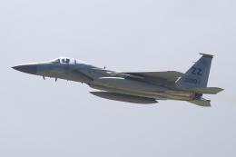 キイロイトリさんが、嘉手納飛行場で撮影したアメリカ空軍 F-15C-35-MC Eagleの航空フォト(飛行機 写真・画像)
