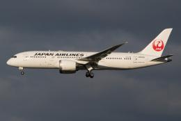 航空フォト:JA838J 日本航空 787-8 Dreamliner