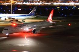 やつはしさんが、羽田空港で撮影したターキッシュ・エアラインズ 787-9の航空フォト(飛行機 写真・画像)