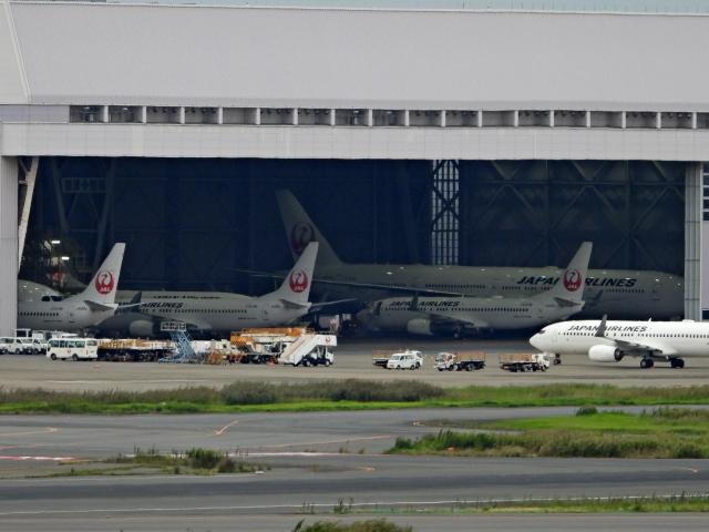 チャレンジャーさんが、羽田空港で撮影した日本航空 777-346/ERの航空フォト(飛行機 写真・画像)