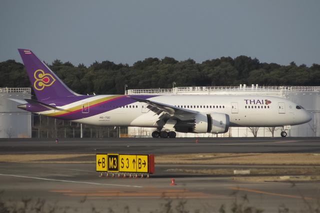 じゃがさんが、成田国際空港で撮影したタイ国際航空 787-8 Dreamlinerの航空フォト(飛行機 写真・画像)