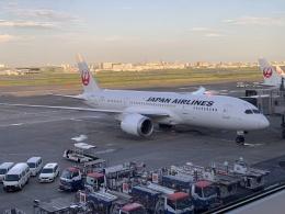 luvento2005さんが、羽田空港で撮影した日本航空 787-8 Dreamlinerの航空フォト(飛行機 写真・画像)
