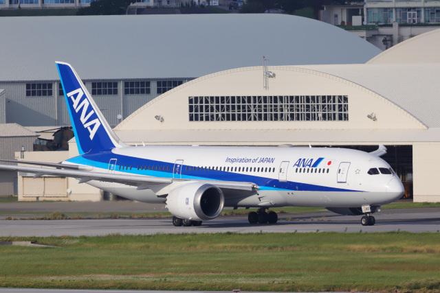 KANE0722さんが、那覇空港で撮影した全日空 787-8 Dreamlinerの航空フォト(飛行機 写真・画像)