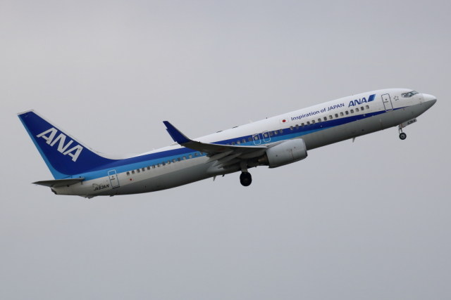 K_UNITED®さんが、羽田空港で撮影した全日空 737-881の航空フォト(飛行機 写真・画像)