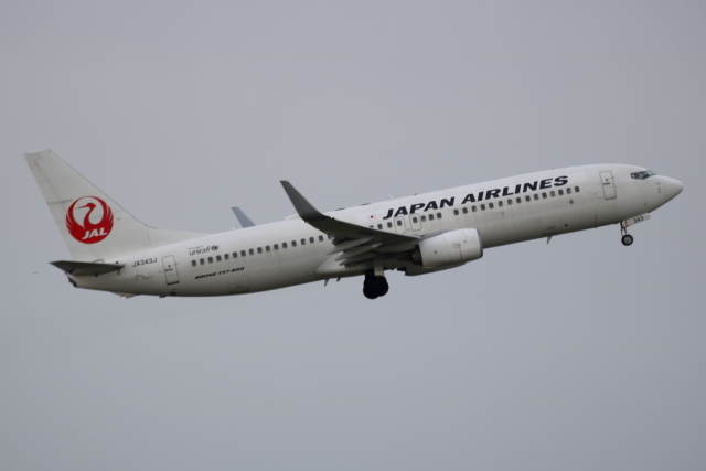K_UNITED®さんが、羽田空港で撮影した日本航空 737-846の航空フォト(飛行機 写真・画像)