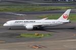 メンチカツさんが、羽田空港で撮影した日本航空 787-8 Dreamlinerの航空フォト(飛行機 写真・画像)