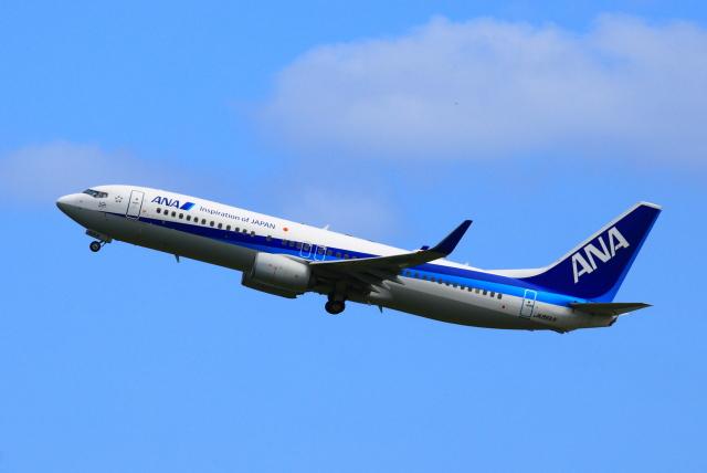 スターアライアンスKMJ まいやんさんが、新石垣空港で撮影した全日空 737-881の航空フォト(飛行機 写真・画像)