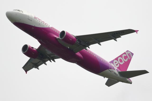 こだしさんが、成田国際空港で撮影したピーチ A320-214の航空フォト(飛行機 写真・画像)