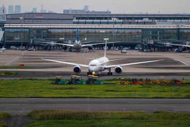 紫電さんが、羽田空港で撮影した日本航空 787-9の航空フォト(飛行機 写真・画像)